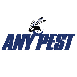 Any Pest - Pest Control